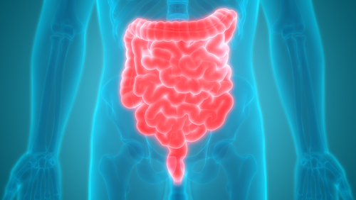 Common Blood Pressure Medication May Cause Small Bowel Angioedema, Case Report Shows