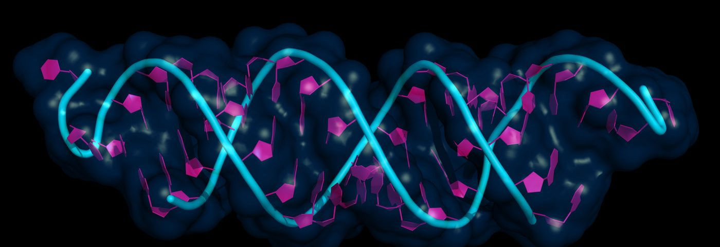 Mutation Detection Method Cheaper, Quicker for HAE Diagnosis Than Sequencing, Study Says