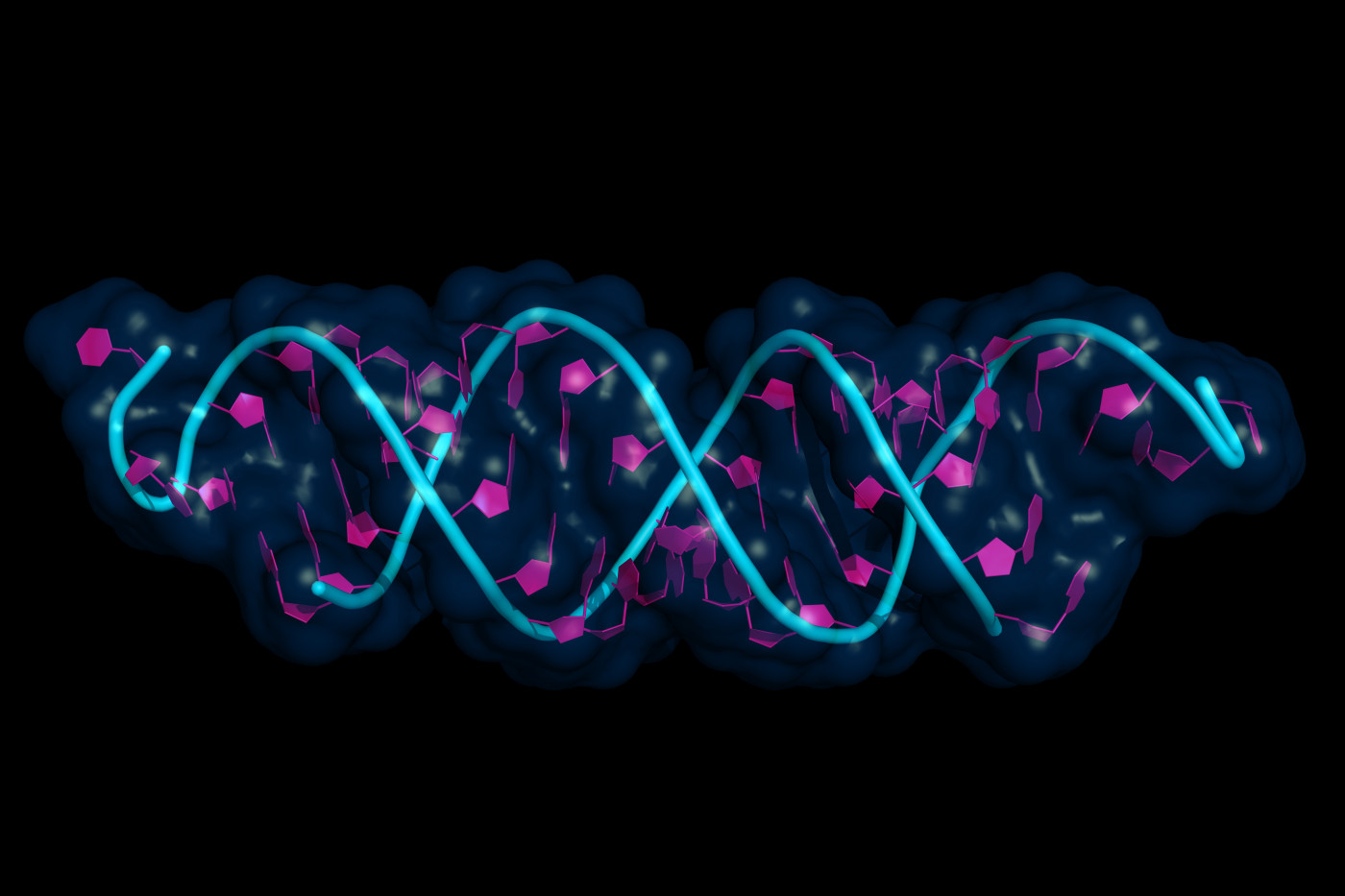 mutations and risk